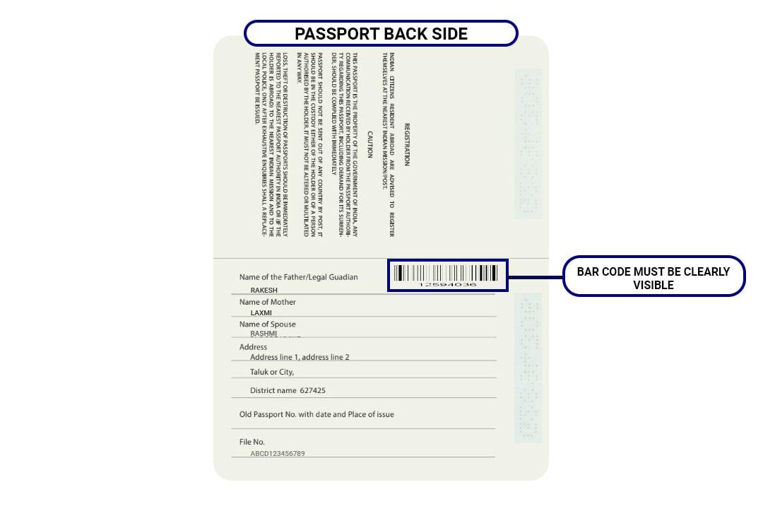 russia visa online